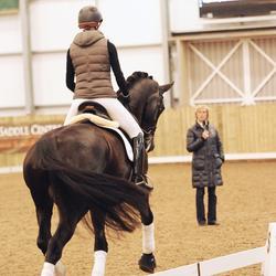 Photo from BritishDressage.co.uk